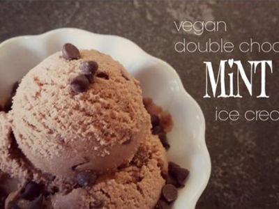 Double Chocolate Mint Ice Cream
